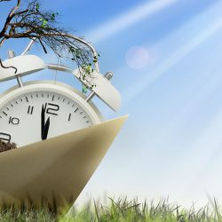 alarm clock and tree